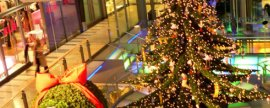Como aproveitar melhor o Natal?