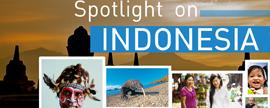 Spotlight on Indonesia - January 2014