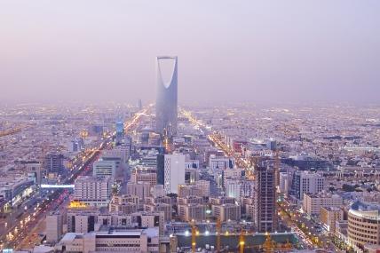 사우디아라비아 소비자패널 확대
