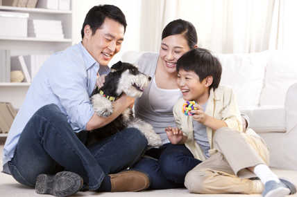 The growth path of pet food in China