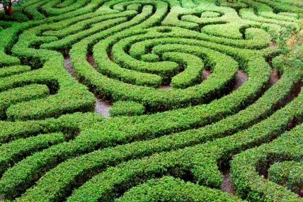 Se identificaron 6 grupos que van desde los que sólo piensan en verde hasta los que son muy activos en el cuidado del planeta