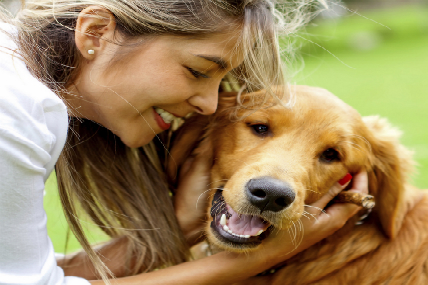 22 de Julio: Día del mejor amigo, el perro