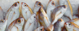 Fish flounders in the face of inflation