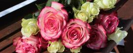 Día de las Madres: El mejor regalo para una mamá