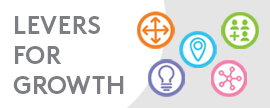 5 Strategic Levers for Growth