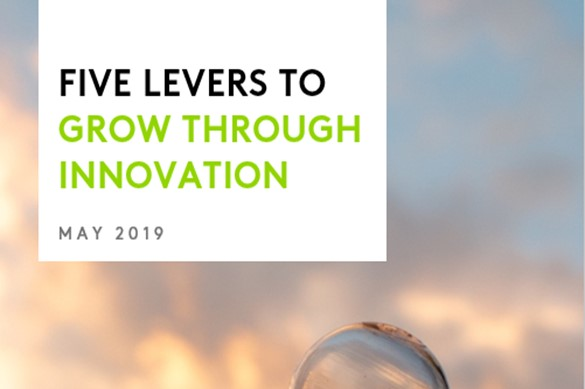 Five Levers to Grow Through Innovation