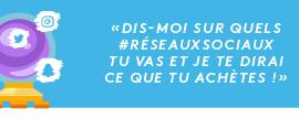 Infographie | Les Français et les Réseaux Sociaux