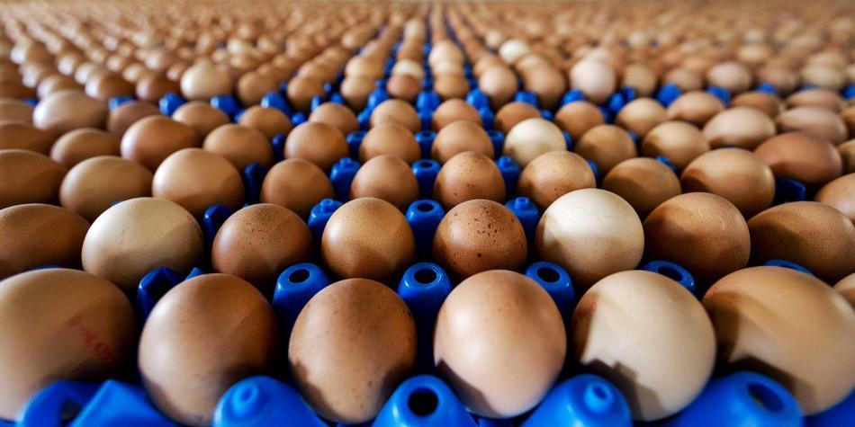 El cosumo de huevos en 2019 en Colombia