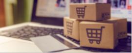 Desenvolvimento do E-commerce no Brasil