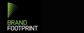 Brand Footprint 2013