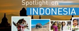 Spotlight on Indonesia - January 2014