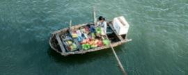 Marcas locales crecen más en Latinoamérica