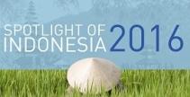 SPOTLIGHT OF INDONESIA 2016